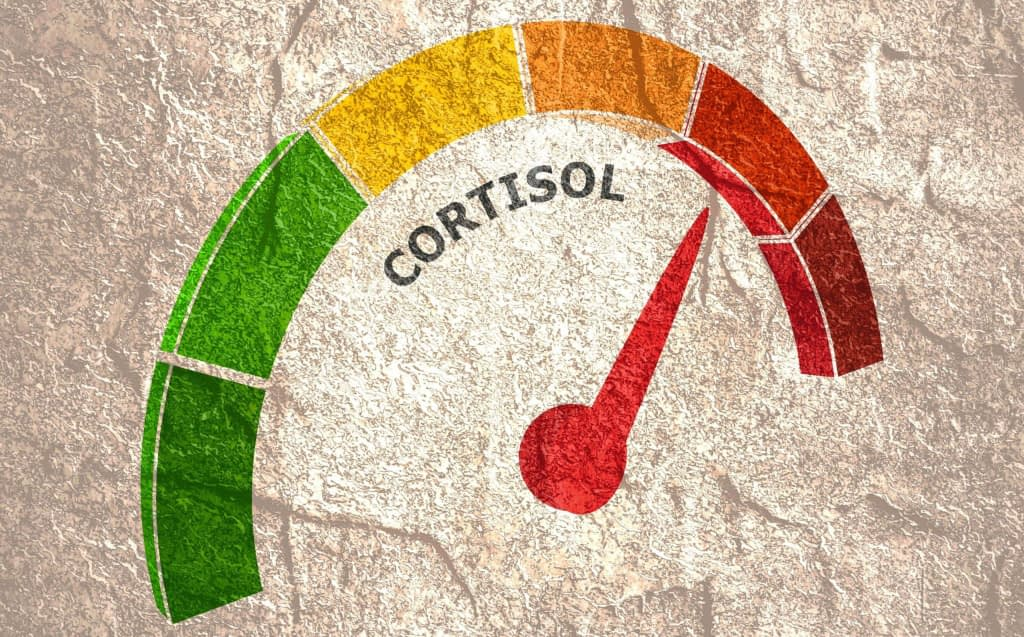 the effect of cortisol can last for hours 2048x1274 1