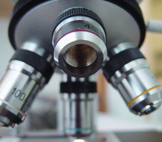 microscope 1 1424913 640x480 e1513195522228