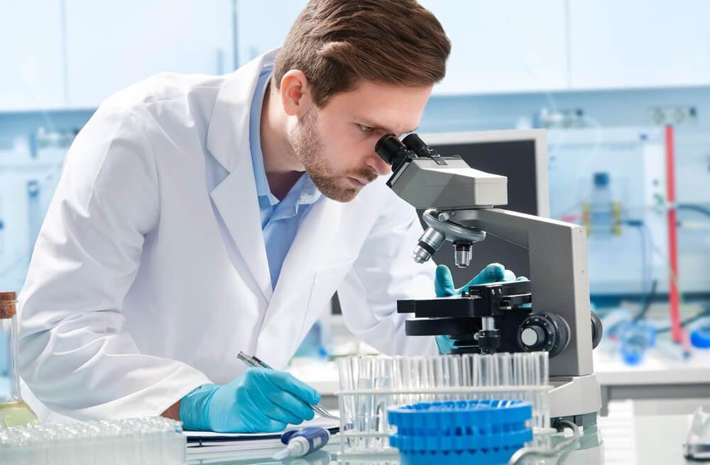 scientific research on testosterone