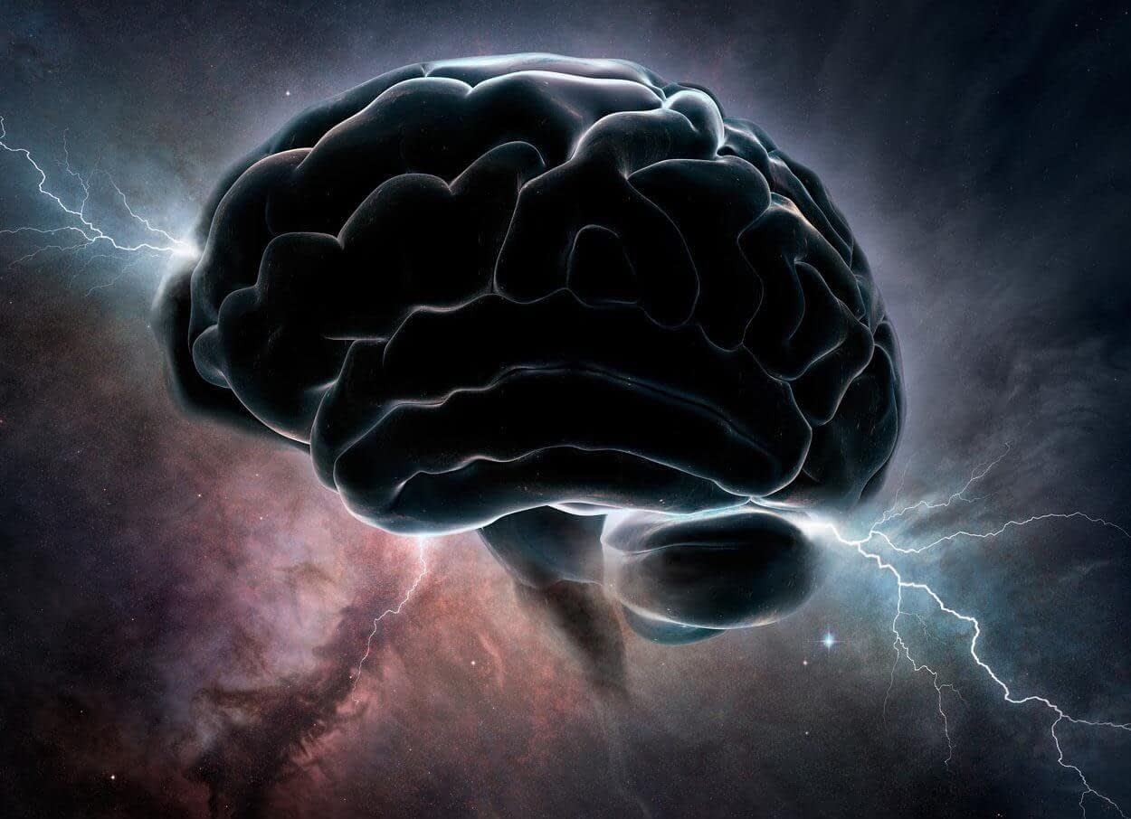 testosterone brain