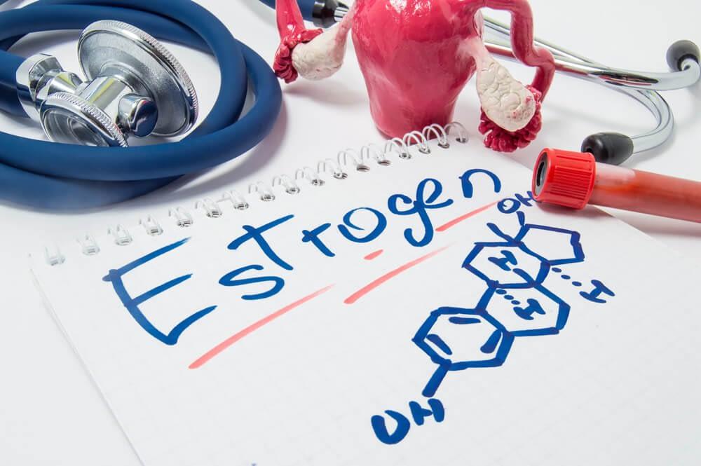 aromatase converts testosterone to estrogen
