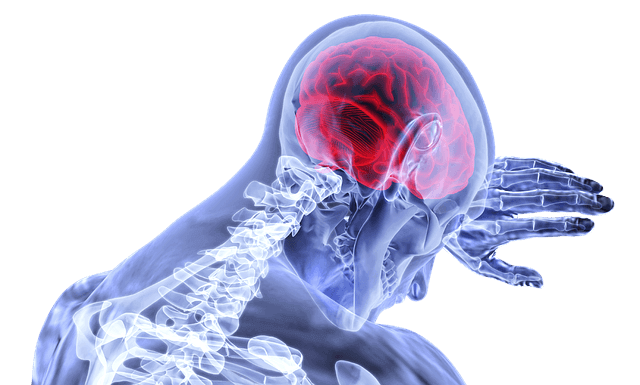 brain cannot handle porn