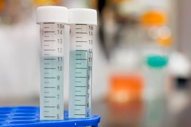 effect of zinc administration on plasma testosterone