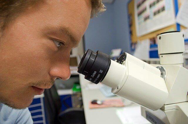eurycoma longifolia increases sexual motivation
