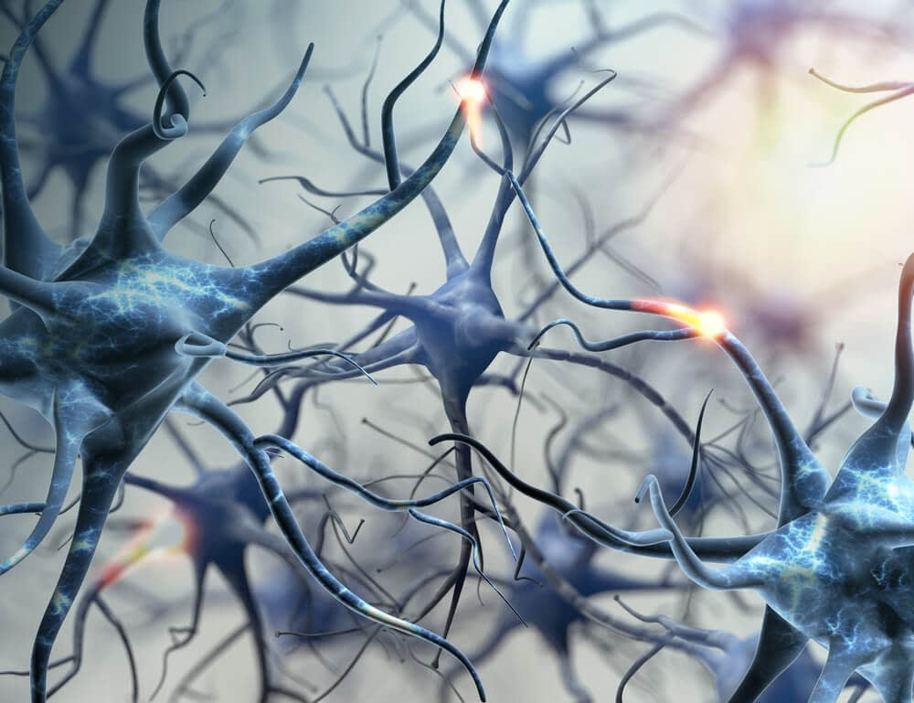 forming neural connections in the brain