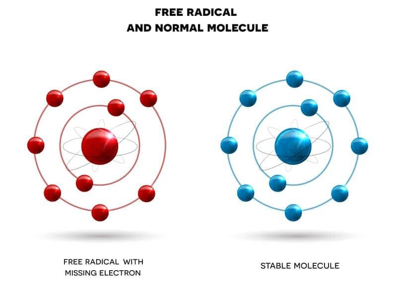 free radicals can eliminate nitric oxide e1589867000892 3
