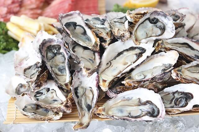 giacomo casanova used oysters as aphrodisiac