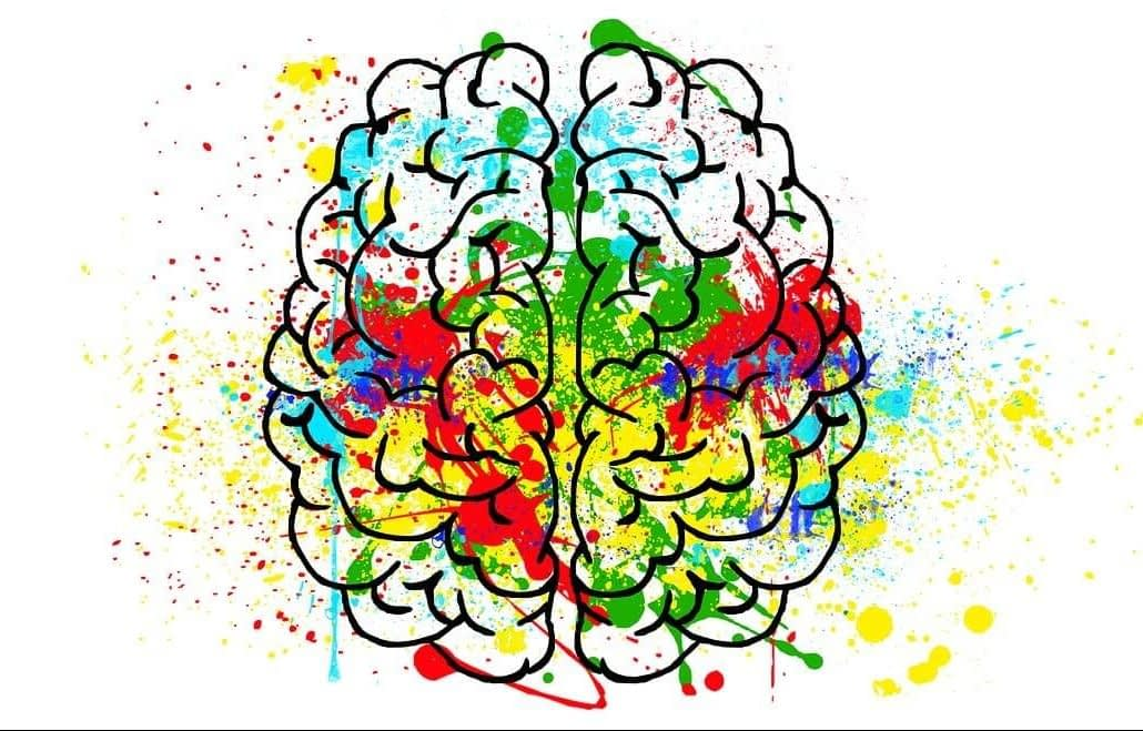 gonadotropin releasing hormone is produced in the brain e1600613594875