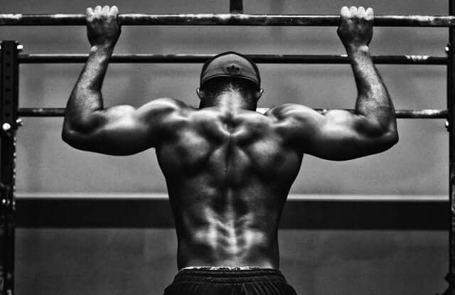 icariin is used by some body builders to boost testosterone