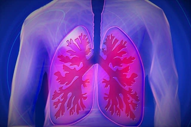 lungs expanded stress response