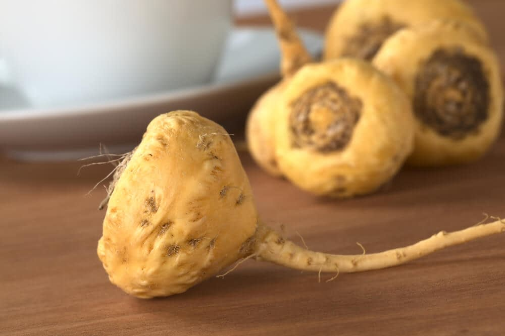 maca has been used as a staple food for both humans and domesticated animals