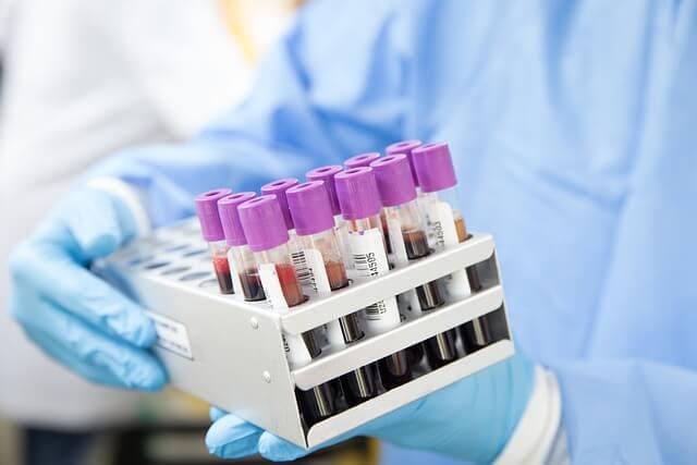 maca increases serum testosterone
