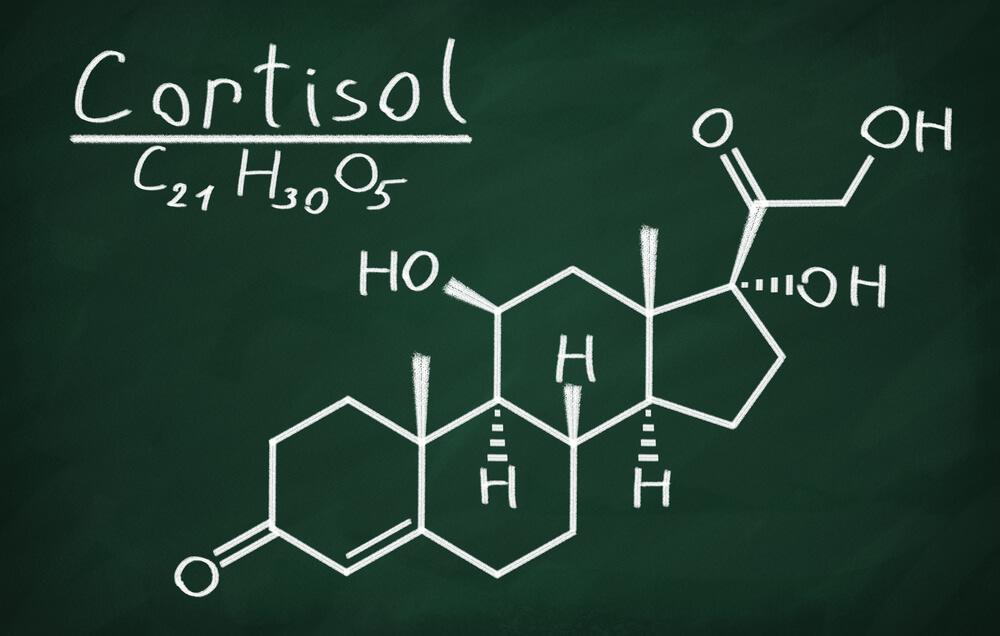 maca may decrease cortisol production
