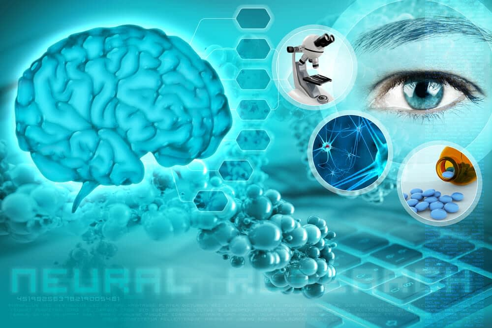 porn can cause neuroplastic brain changes
