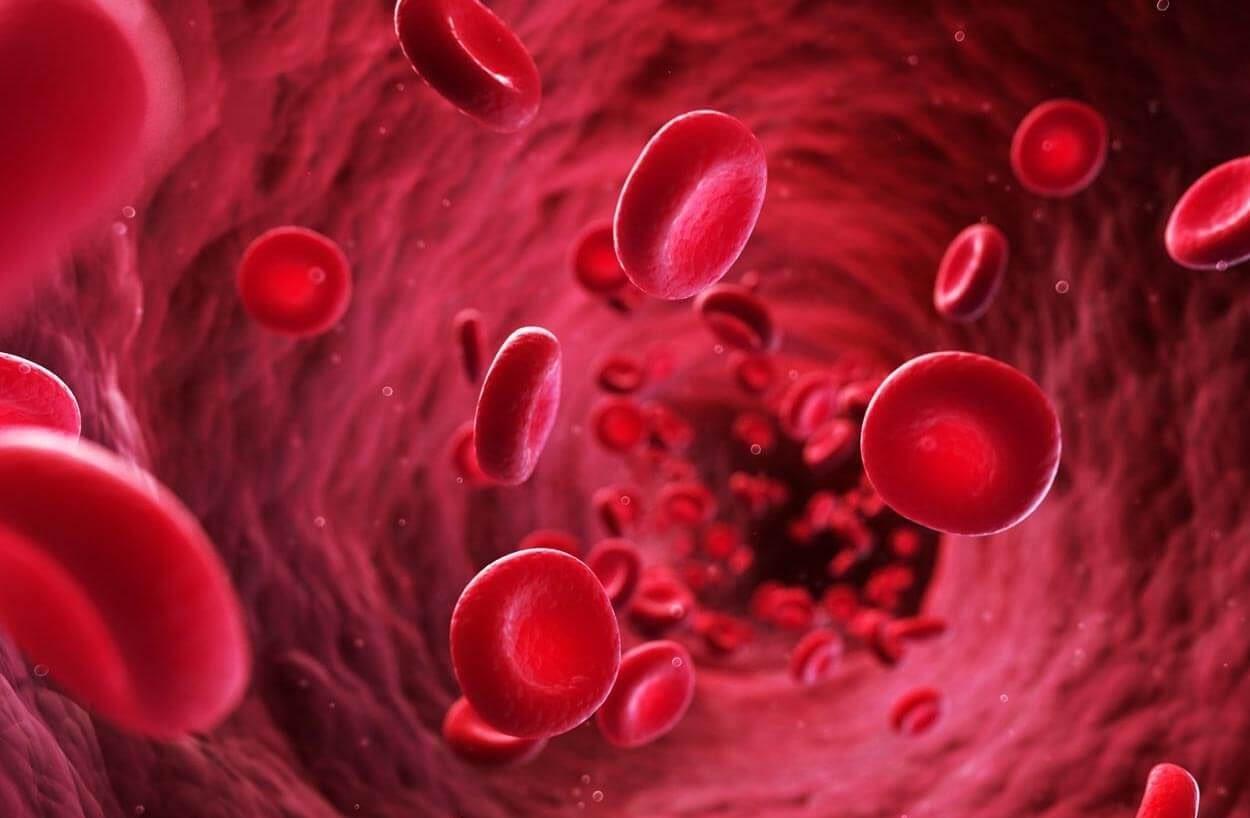 proper bloodflow to avoid erectile dysfunction e1596474390928
