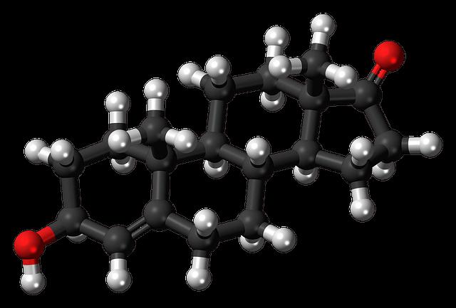 protodioscin can be a precursor to dehydroepiandrosterone dhea