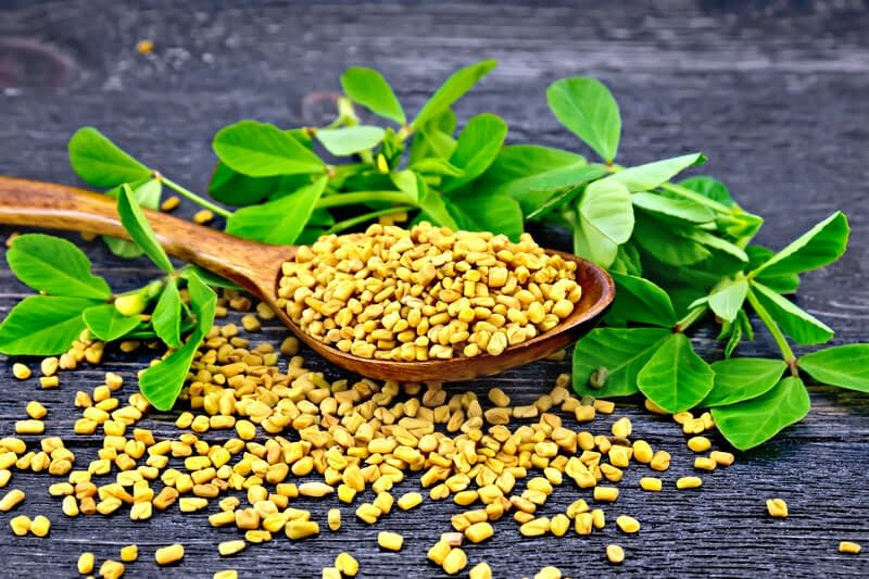 protodioscin can stimulate the production of luteinizing hormone