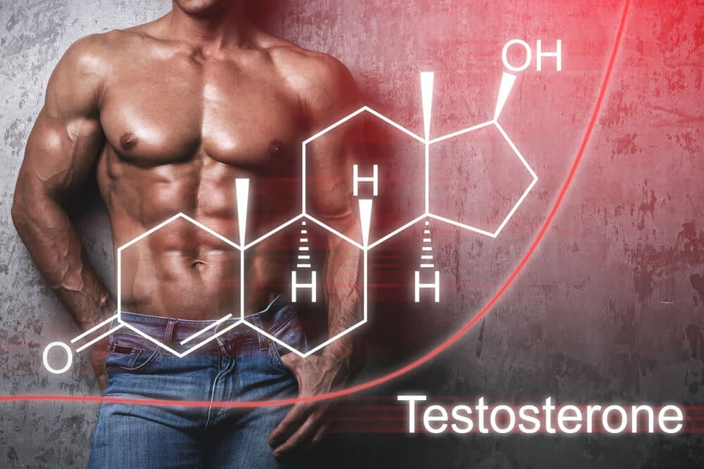 testosterone is important for sexual functions 1