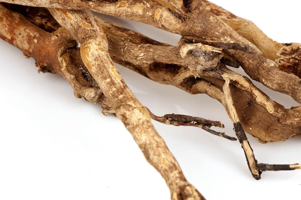 tongkat ali roots