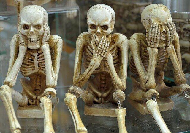skeletons 1617539 640 1