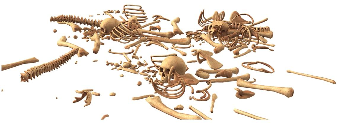skull 3378748 1280 1 e1625137525371